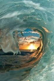 بالصور عجائب البحر , اجمل صور لعجائب البحر 4689 7