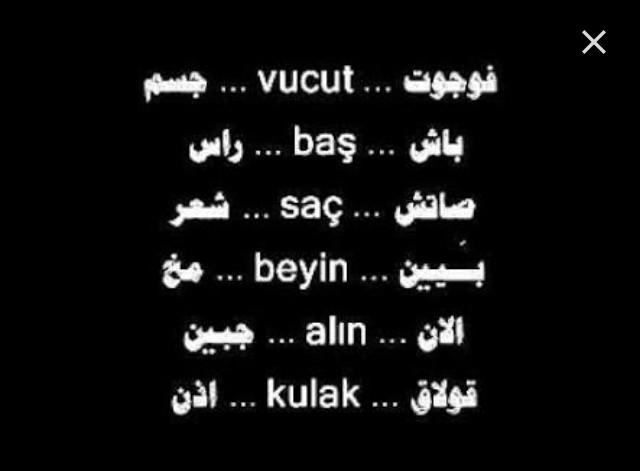 كلمات بالتركي , تعليم الكلمات التركية صور بنات