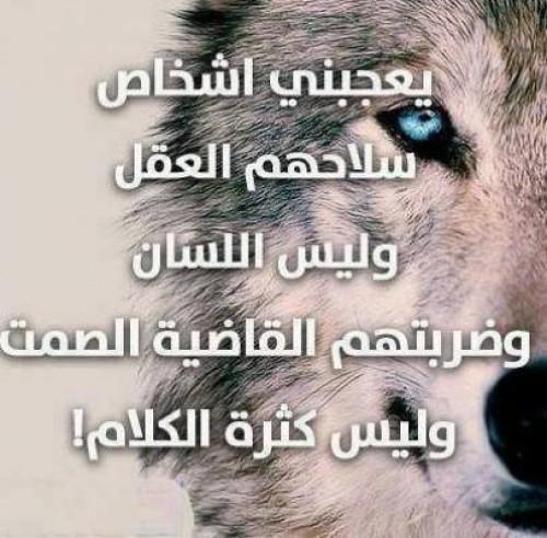صورة صور كلام الناس , حكم وعبر عن كلام الناس 5290 8