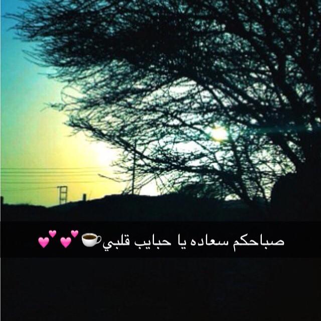 صورة كلام سناب , كلمات وصور سناب 5332 5
