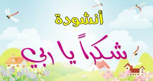 صور انشودة شكرا ياربي , اجمل الاناشيد الاسلاميه
