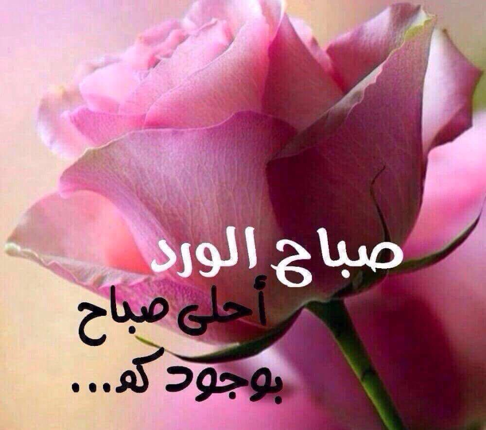 بالصور صباح نور , صور جميله عن الصباح 5543 5