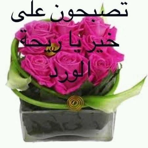 بالصور مسجات تصبحون على خير اسلامية , رسائل وصور تصبحون علي خير 5589 1