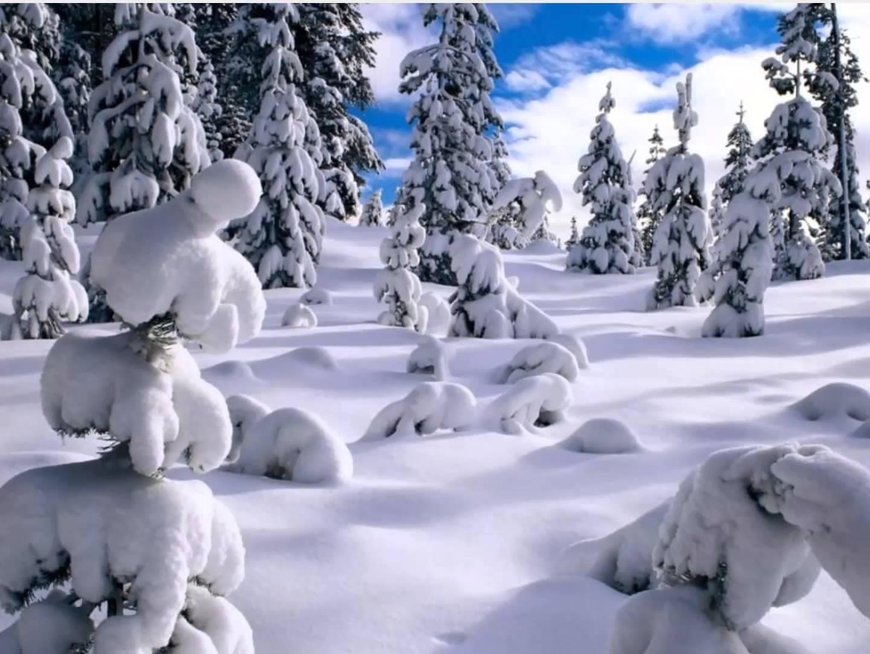 صور صور عن البرد , صور عن الشتاء القارص