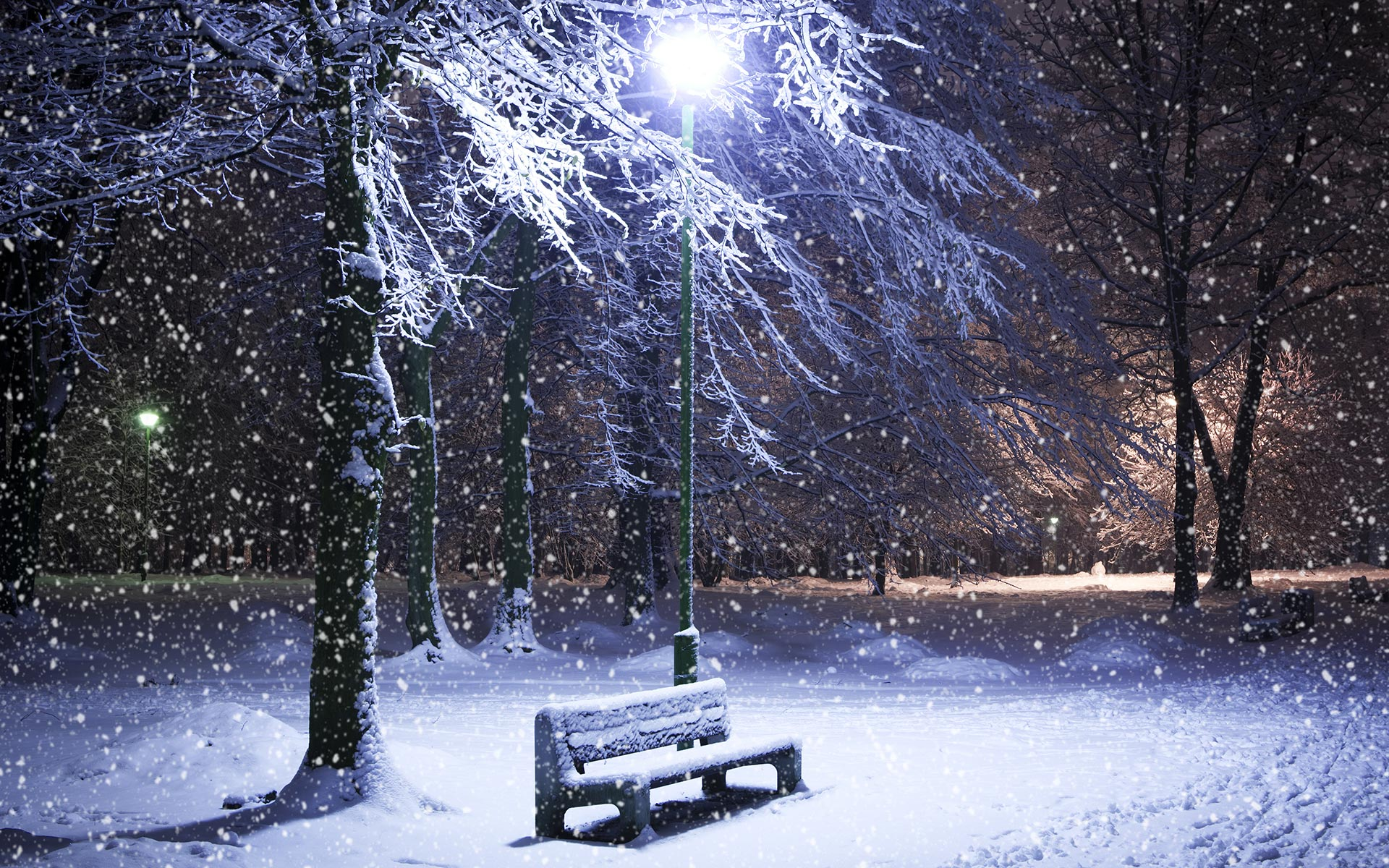 بالصور صور عن البرد , صور عن الشتاء القارص 6283 4