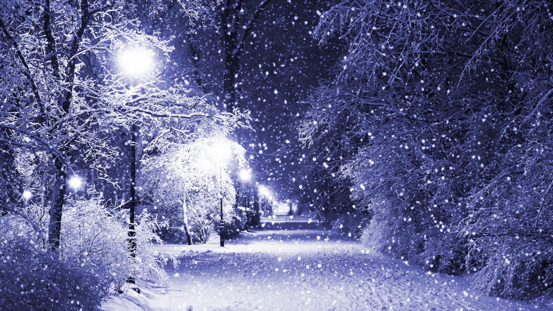 بالصور صور عن البرد , صور عن الشتاء القارص 6283 5