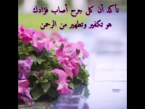 بالصور عبارات عن الورد , ارق الكلام عن الورود ذات الرائحة الروعة 244 7