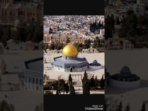 بالصور صور عن فلسطين , اجمل الصور الفلسطنية الجميلة 257 7