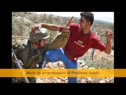 بالصور صور عن فلسطين , اجمل الصور الفلسطنية الجميلة 257 8