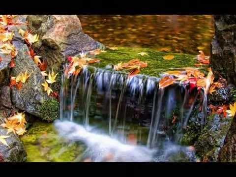 بالصور صور دينية جميلة , اجمل الصور التى توحى بالامان 273 5