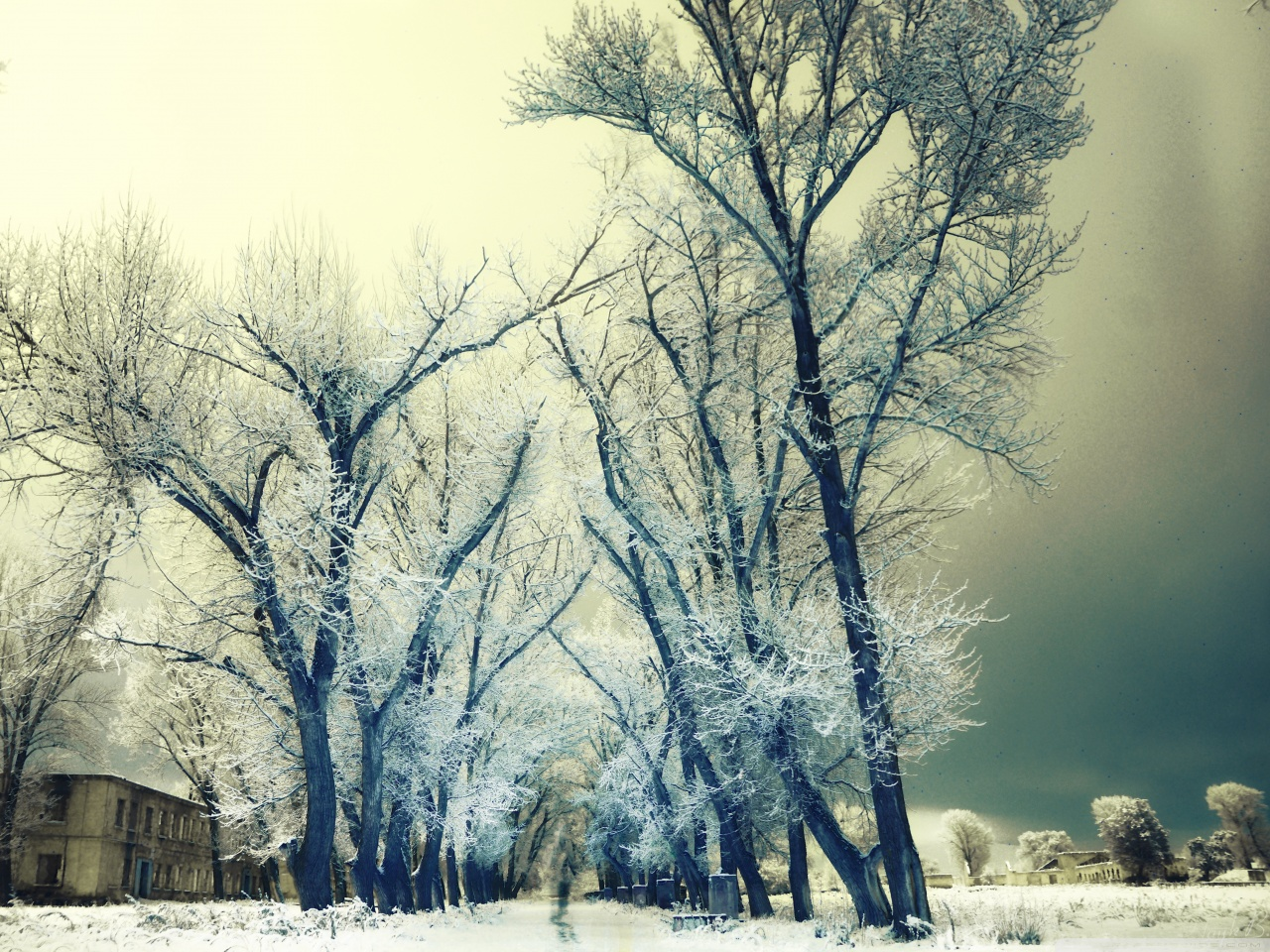 بالصور صور عن الشتاء , اروع صور للشتاء امطار و ثلوج 2933 13