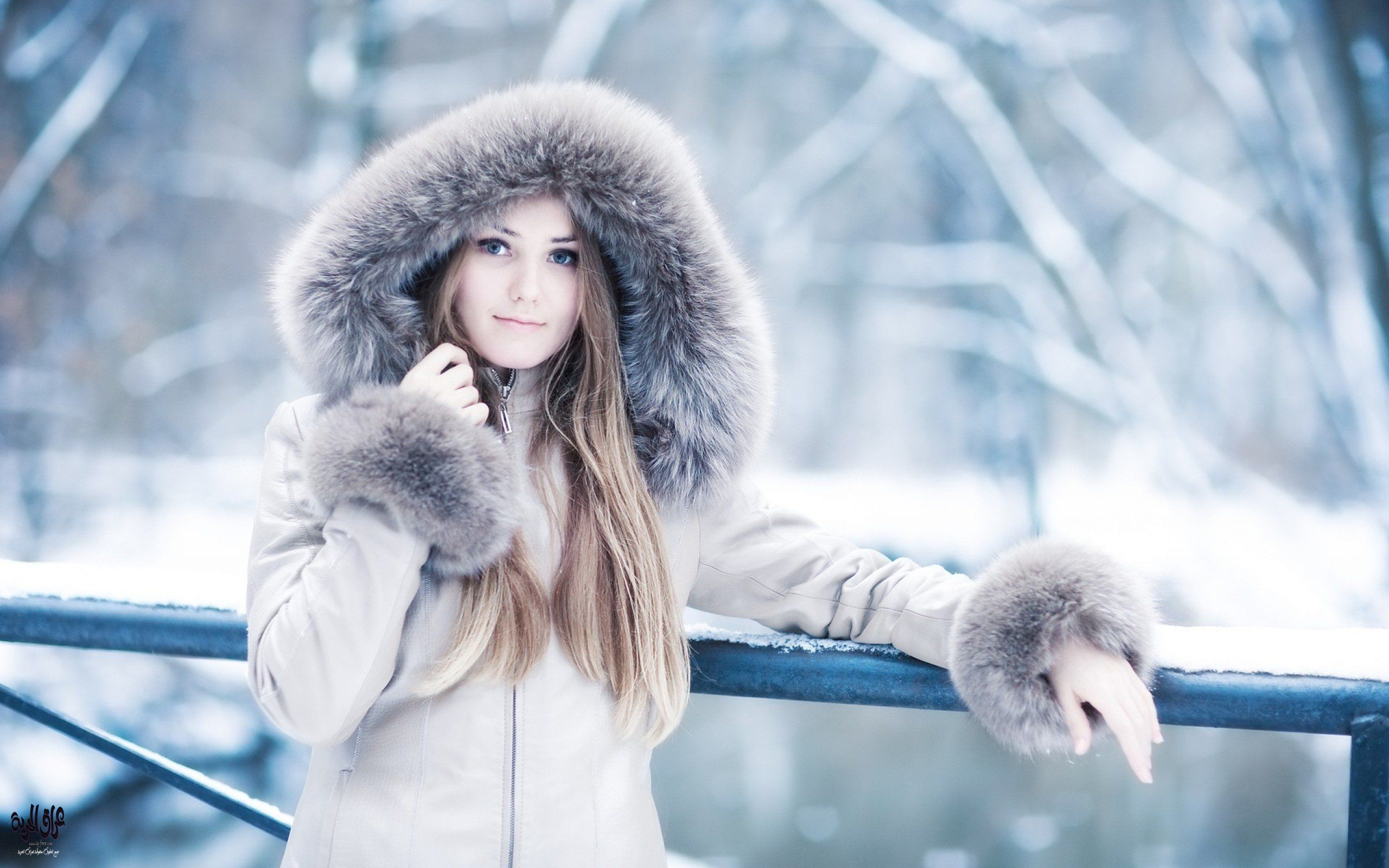 بالصور صور عن الشتاء , اروع صور للشتاء امطار و ثلوج 2933 6