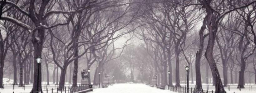 بالصور صور عن الشتاء , اروع صور للشتاء امطار و ثلوج 2933 8