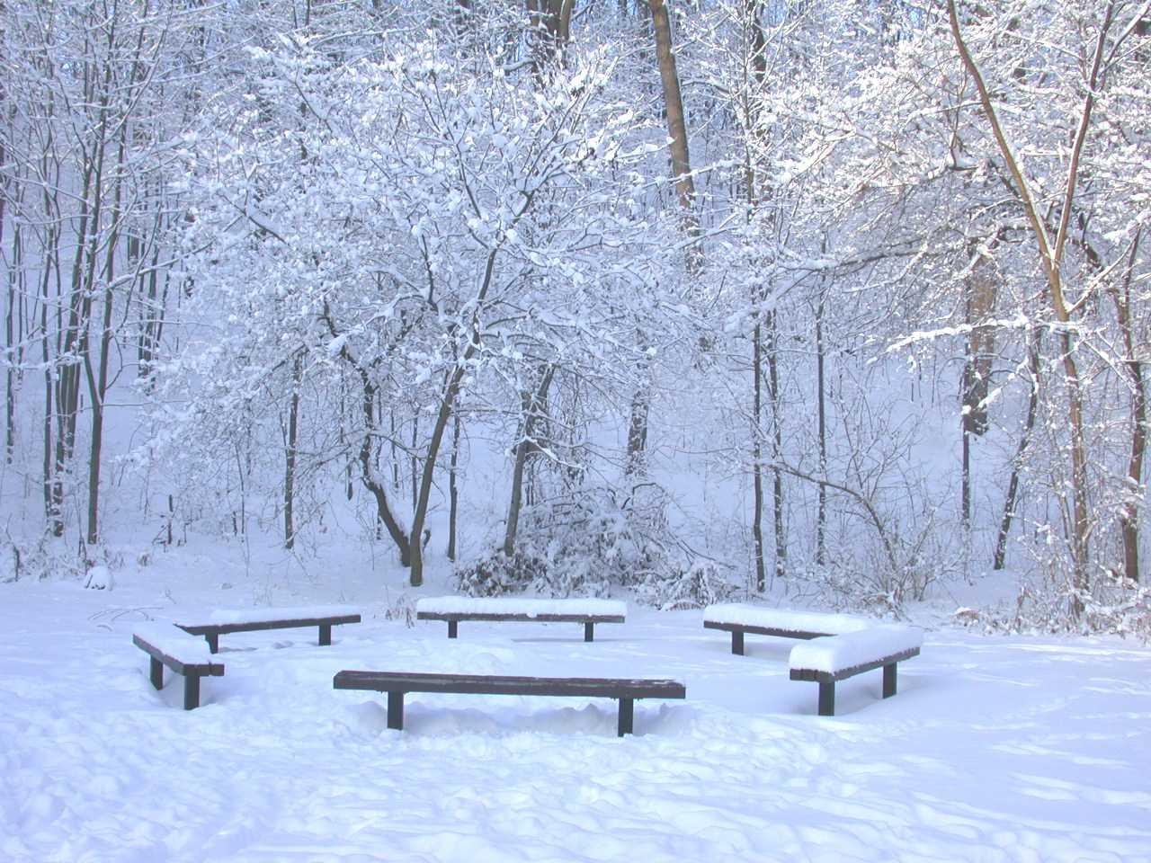 بالصور صور عن الشتاء , اروع صور للشتاء امطار و ثلوج 2933
