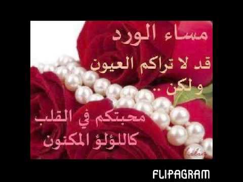بالصور صباح الورد حبيبي , اجمل العبارات والكلمات فى الصباح 341 1