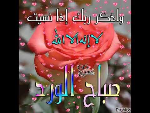 بالصور صباح الورد حبيبي , اجمل العبارات والكلمات فى الصباح 341 10