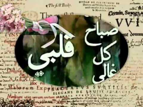 بالصور صباح الورد حبيبي , اجمل العبارات والكلمات فى الصباح 341 5