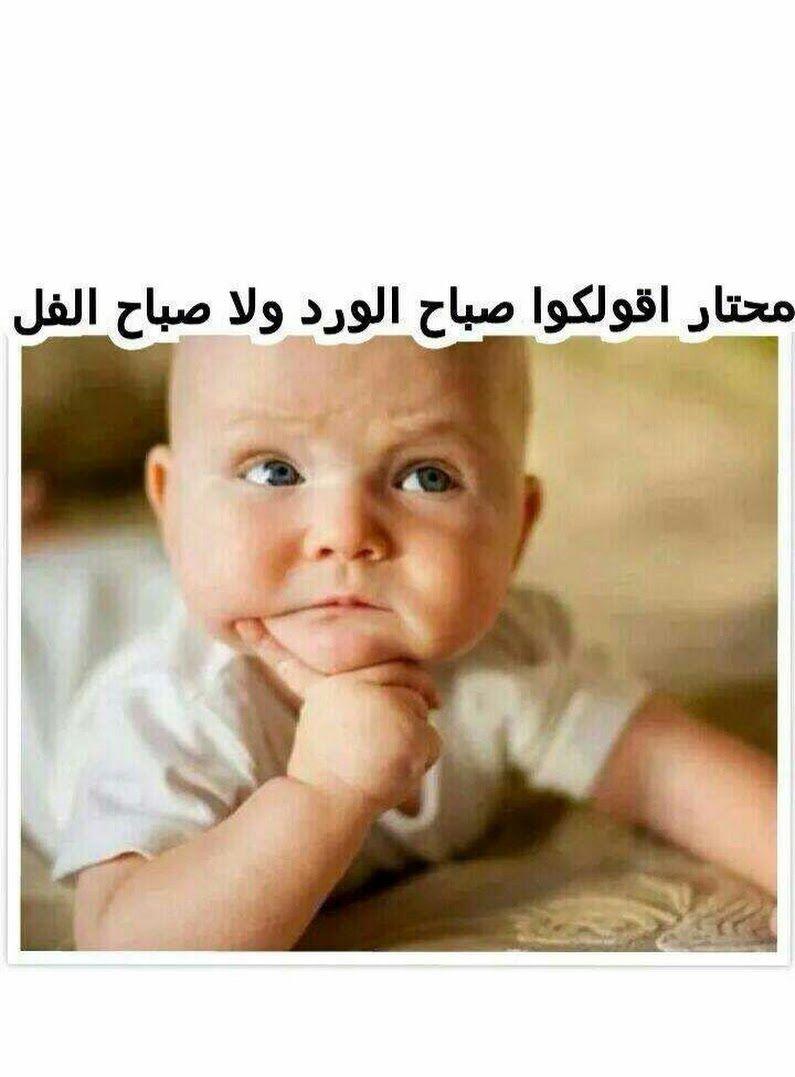بالصور صباح الخير مضحكة , اضحك من قلبك صباح الخير 3499 1