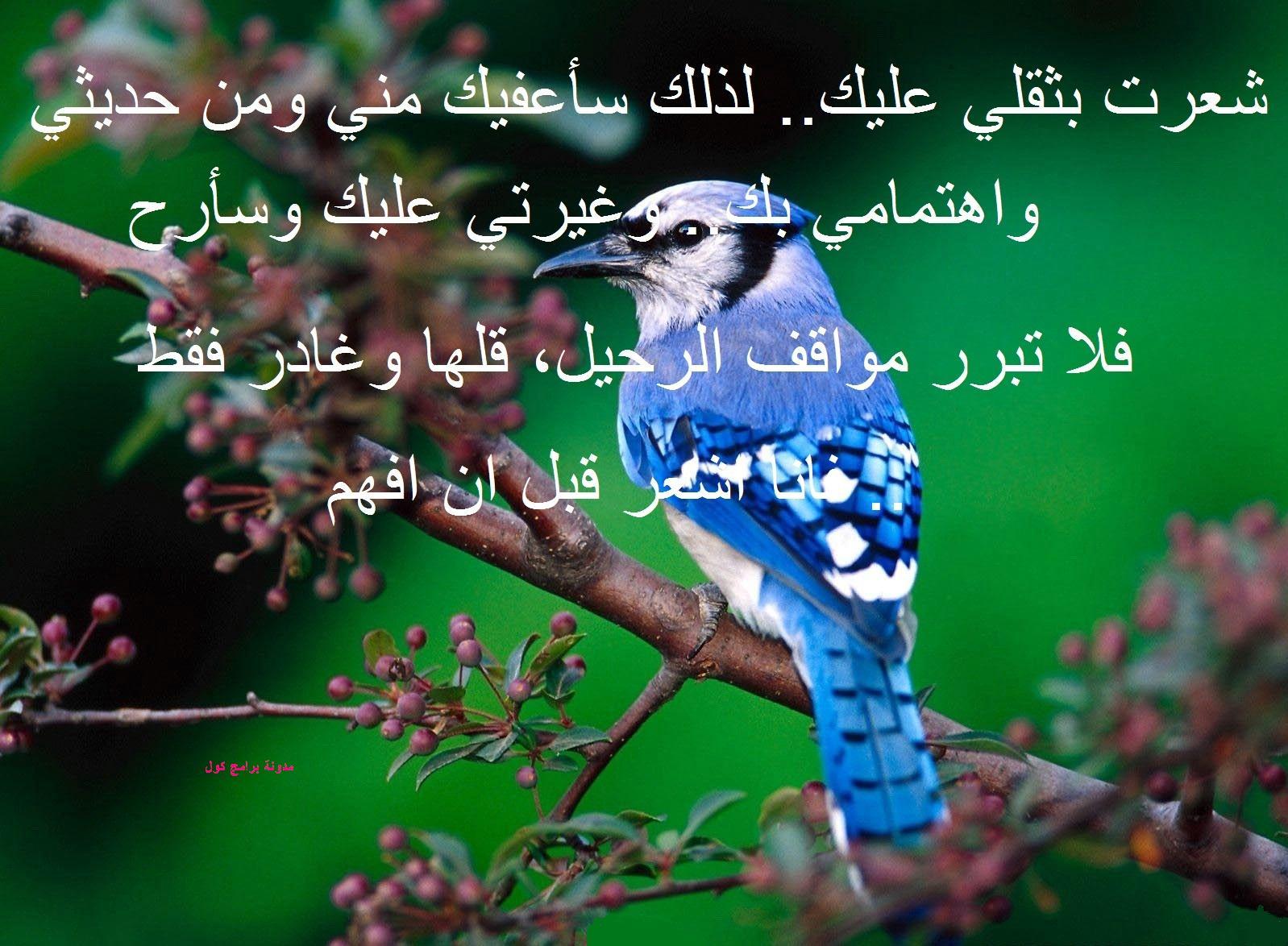 بالصور رسالة عتاب للحبيب , رسائل عتاب قويه ومؤثره للحبيب 3564 6