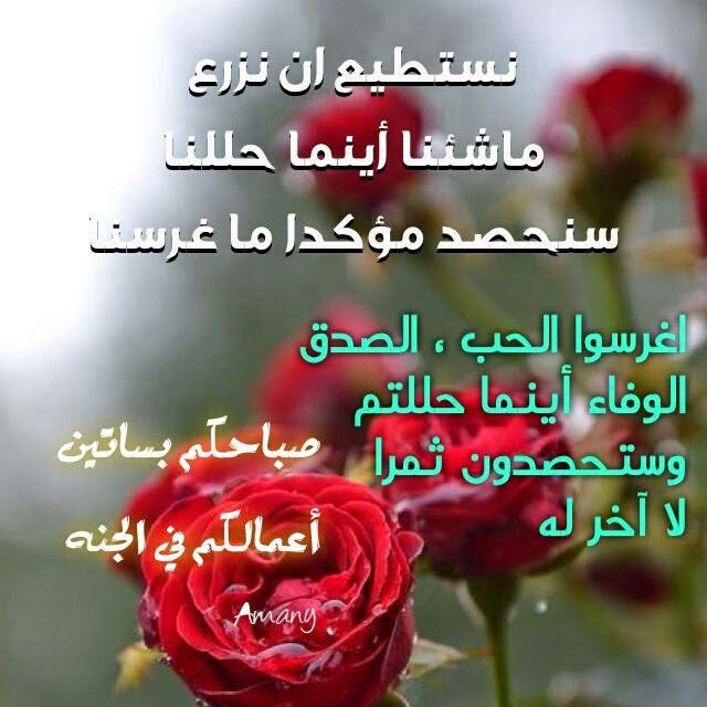 بالصور صباح الحب والشوق , بالصور اجمل صباح الحب والشوق 3608 4