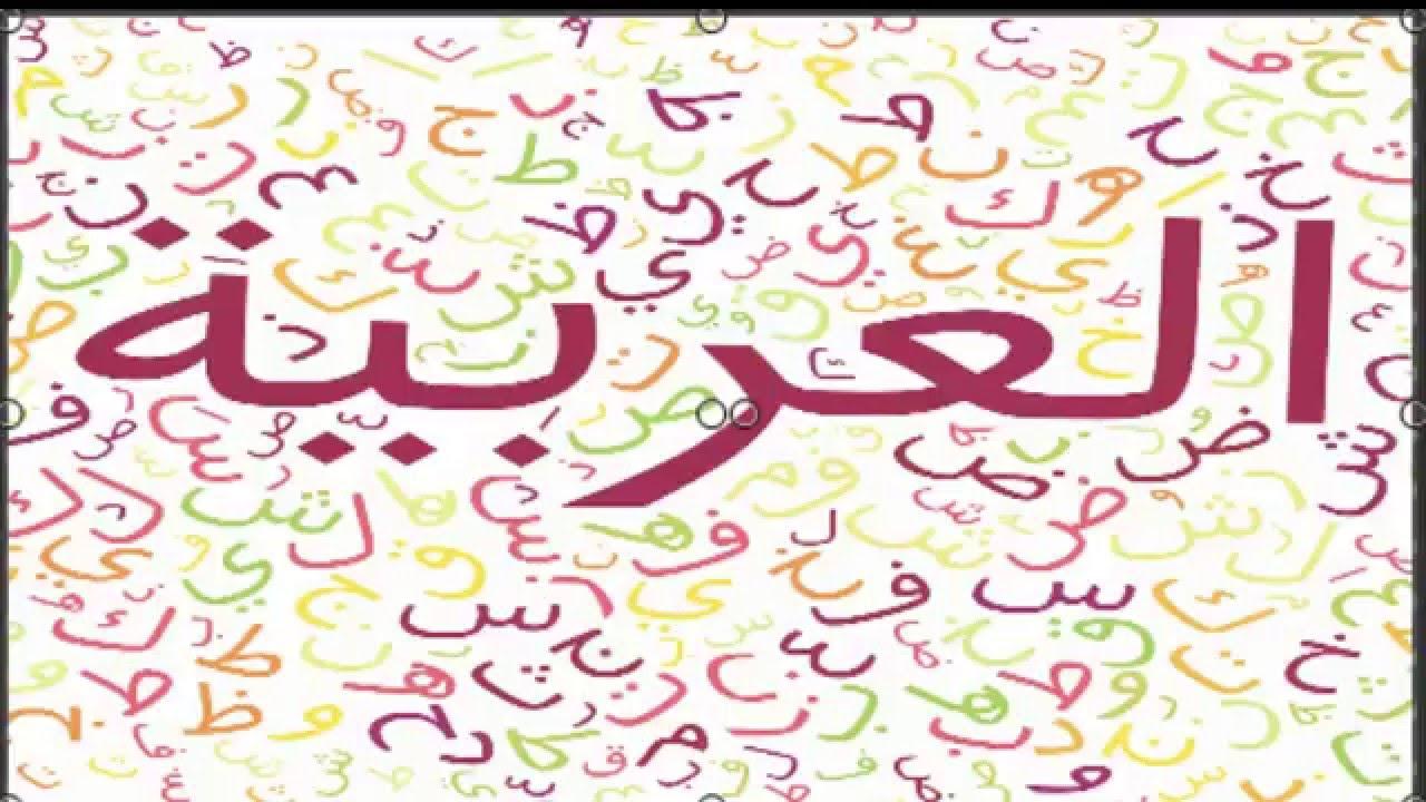 صور معلومات عن اللغه العربيه , اهمية اللغه العربيه و معلومات عنها