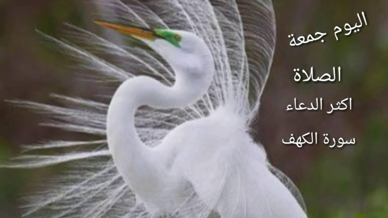 بالصور صور عن يوم الجمعه , احلي الصورعن يوم الجمعه 3654 5