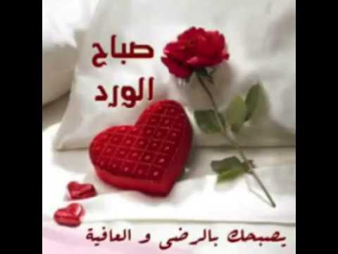 بالصور صباح الخير مسجات , اجمل عبارات وكلمات فى الصباح 368 1
