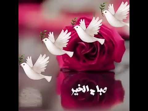 بالصور صباح الخير مسجات , اجمل عبارات وكلمات فى الصباح 368 8