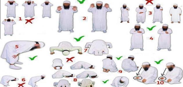 بالصور طريقة الصلاة الصحيحة بالصور , الطريقه الصحيحه للصلاه 3682 4