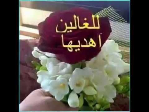 بالصور صباح المحبة , اجمل الكلمات والعبارات الصباحية 415 9
