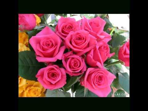 بالصور اجمل الورود في العالم , اروع الهدايا المقدمة لشخص ما 416 5