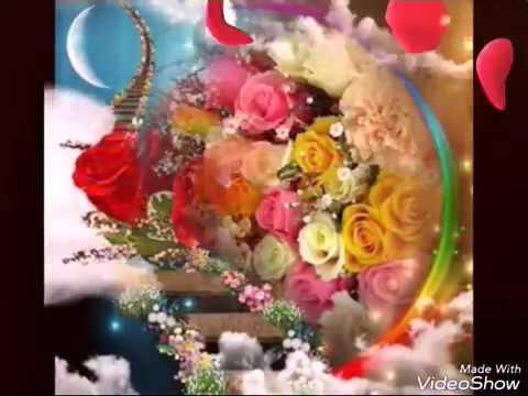 بالصور اجمل الورود في العالم , اروع الهدايا المقدمة لشخص ما 416 6