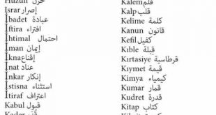 بالصور تعلم تركي , اروع واحسن التعليمات التركية 435 3 310x165