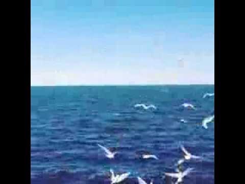 بالصور خلفيات بحر , اروع الخلفيات الرقيقة الجميلة كالبحار 441 9