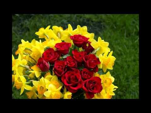 بالصور صور ورد جميل , اروع الورود الروعة الجميلة 505 8