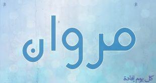 صوره معنى اسم مروان , المعانى الاسماء الجيدة الخفيفة