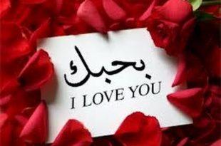 بالصور اجمل مسجات الحب , اروع الصور والرسائل الجميلة للحب 543 12 310x205