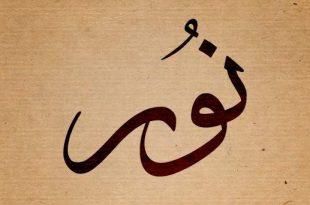 صوره ما معنى اسم نور , تفسير اسم نور