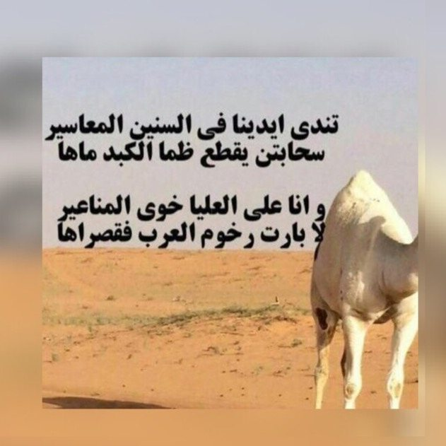 بالصور قصيدة مدح في الخوى , اروع ما تغنى به الشعراء عن الخوى 3662 9