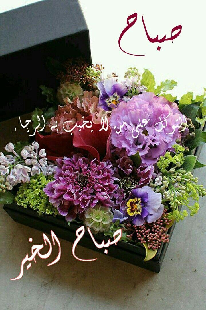 بالصور رمزيات صباحيه , صور ورسائل صباحيه 2435 3