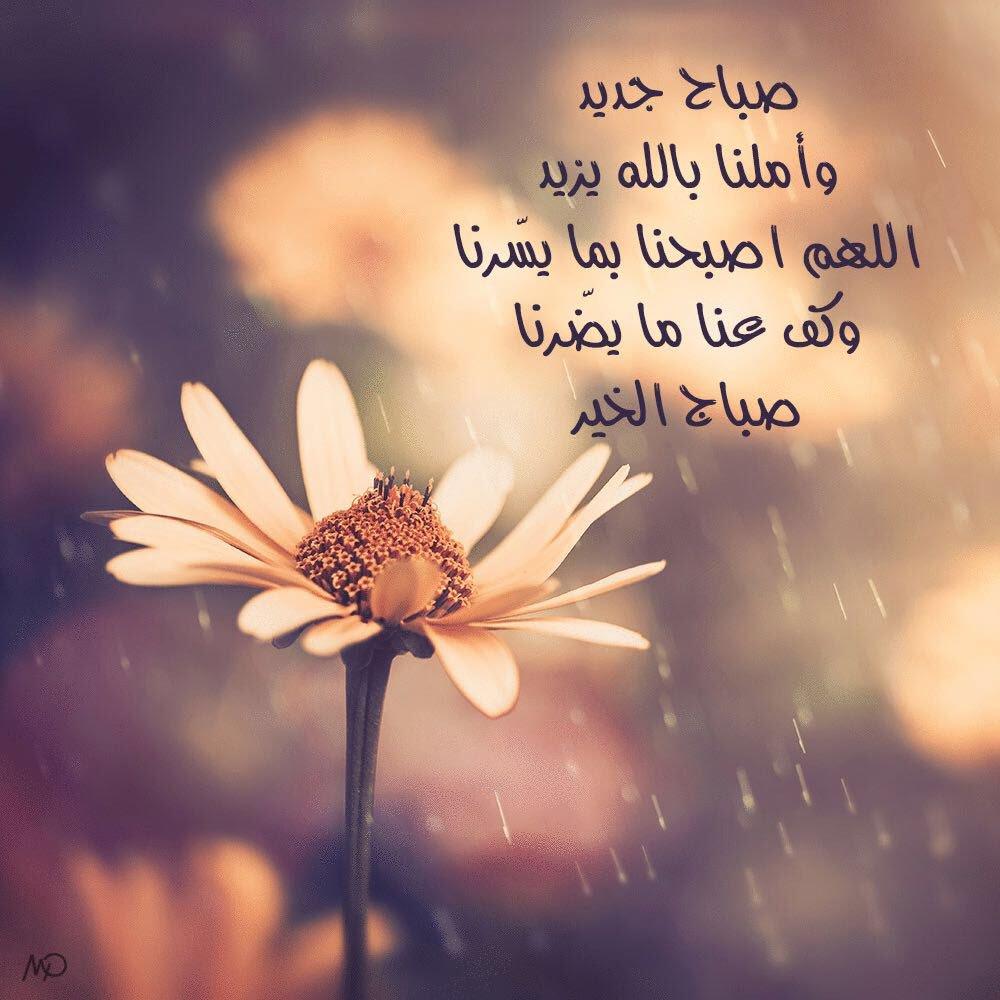 بالصور رمزيات صباحيه , صور ورسائل صباحيه 2435 4