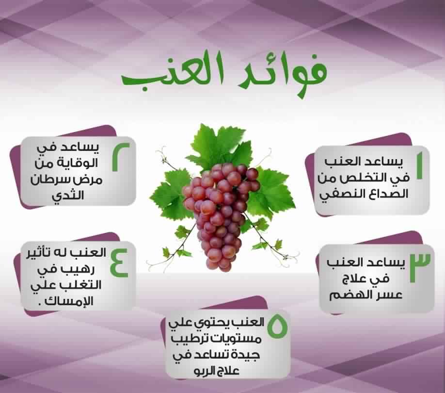 بالصور فوائد العنب , المميزات التى تجنى عند اكل العنب 2487 2