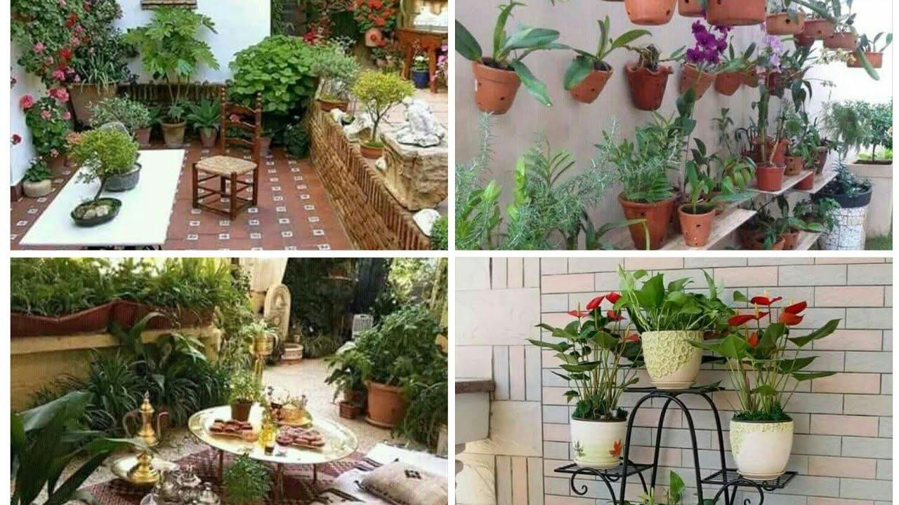 صورة تنسيق حدائق منازل , كيفيه تنسيق حدائق المنازل 12508 5