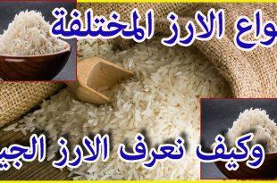 بالصور افضل انواع الرز , ماهي افضل انواع الارز 12549 2 310x205