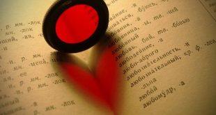 بالصور تعبير عن الحب بكلمات , كلمات رائعه جدا عن الحب 12717 14 310x165