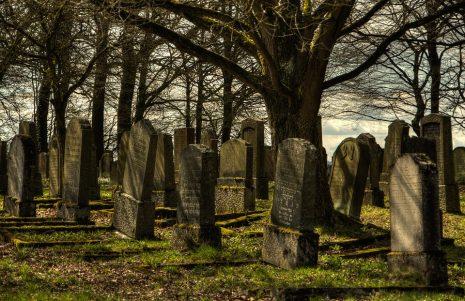 صورة المقابر فى المنام , ما تفسير رؤيه المقابر بالحلم