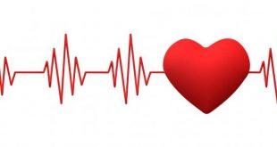 صورة دقات القلب الطبيعية , ماهي عدد دقات القلب الطبيعيه