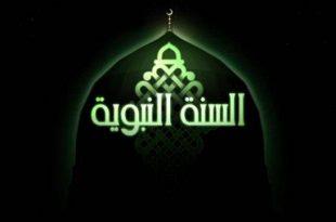 بالصور ما معنى السنة , معلومات رائعه عن السنه في الاسلام 12816 2 310x205