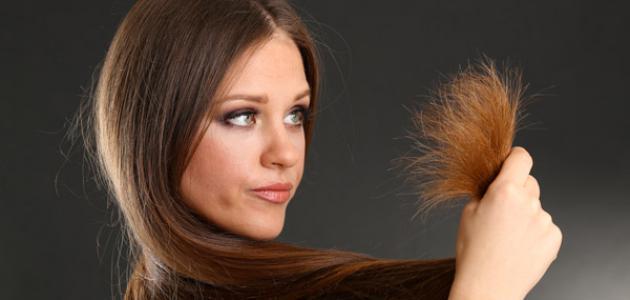 صور تقصف اطراف الشعر , اسباب تلف الشعر الجاف
