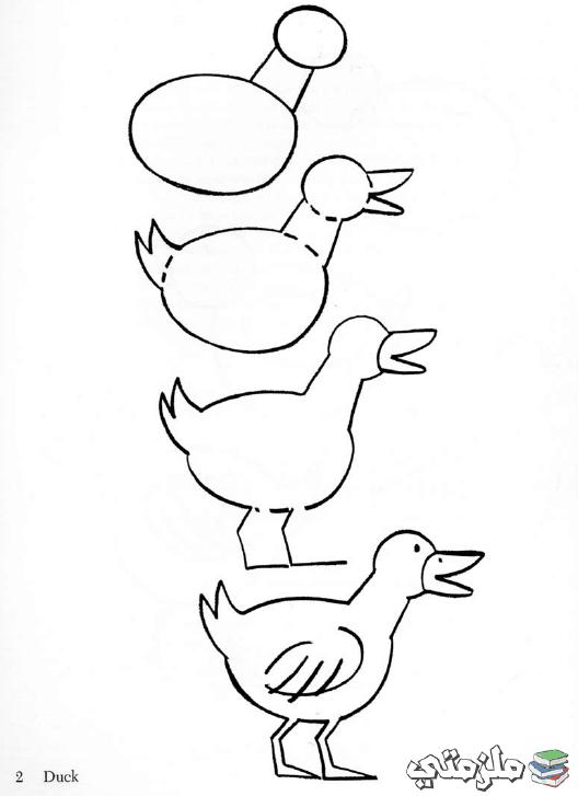 صورة تعليم الرسم للصغار , مبادئ واسس الرسم الصحيحه
